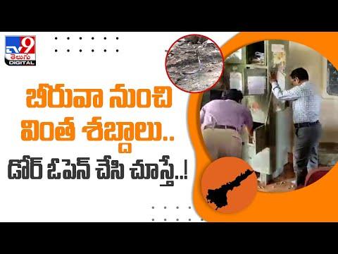 బీరువా నుంచి వింత శబ్దాలు..డోర్ ఓపెన్ చేసి చూస్తే..! - TV9