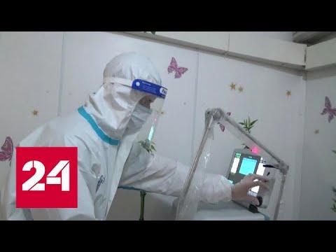 Масштабная вакцинация пришла в Ярославскую область