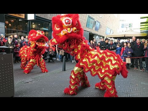 Dragon and Lion Dance - Chinese New Year 2019 in The Hague (Den Haag), Netherlands photo