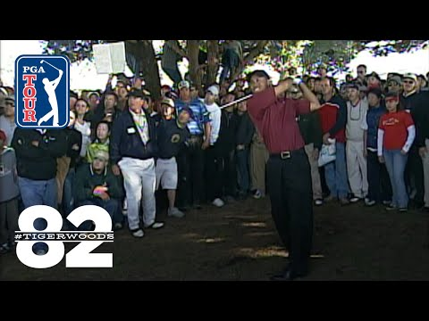 Tiger Woods wins 2003 Buick Invitational Chasing 82