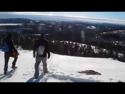 Snöskor i Skuleskogen / Snowshoes in Skule National Park (2/4).MOV