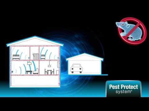 Silverline - Mice & Rat free - How it works