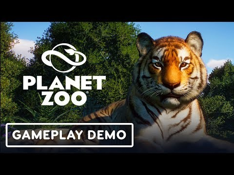 Planet Zoo: The Spiritual Successor to Zoo Tycoon - Gamescom 2019 - UCKy1dAqELo0zrOtPkf0eTMw