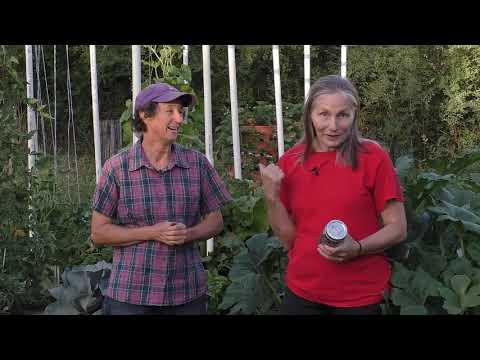 Adventures in High Performance Gardening | Week 23