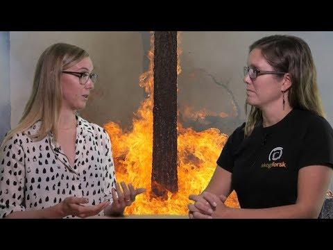Viltanpassad skogsskötsel i praktiken – seminarium 4: Vilt och skogsbrand
