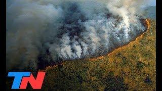 El Amazonas en llamas: los números del desastre   TN CENTRAL