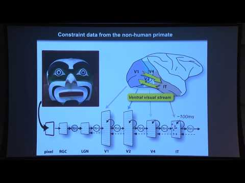 Reverse Engineering the Mind - Prof. James DiCarlo, MIT Department of Brain and Cognitive Sciences
