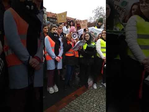 Młodzieżowy Strajk Klimatyczny przeszedł ulicami Gliwic