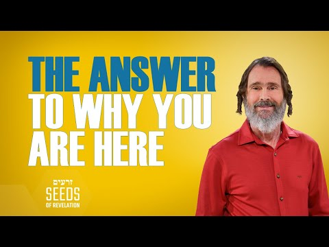 The Answer to Why You Are Here