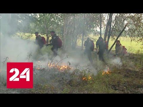 Пожары в Якутии: ситуация немного улучшилась