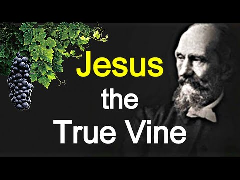 The True Vine / Meditations on John 15:1-16 - Andrew Murray