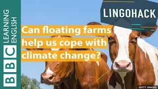 Can floating farms help us cope with climate change? Watch Lingohack