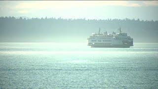 Ferry Worker Bitten by Bat in Washington State