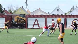 Chippewa Valley 2020 WR/S Seth Wilson-Edwards highlights from Hamtramck 7on7 tournament