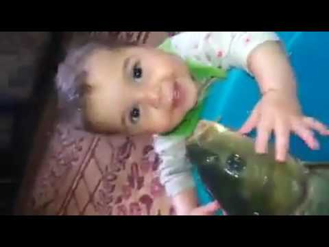 Fish Loves This Cute Baby