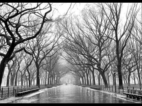 Ana carolina- Uma louca tempestade - UCDAWxDP5XJ37hWvpGJEfWEA