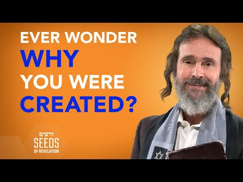 Ever Wonder Why You Were Created?
