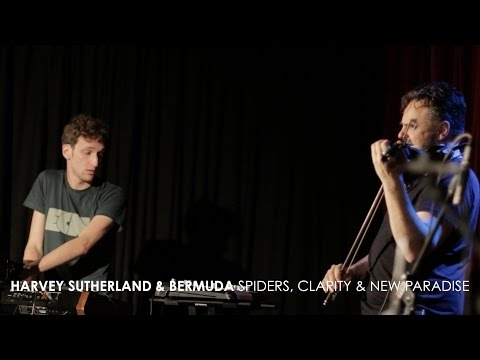 Harvey Sutherland and Bermuda - 'Spiders', 'Clarity' & 'New Paradise' (Live at 3RRR) - default