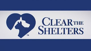 Animal shelters across Texoma prepare for Clear the Shelters Saturday