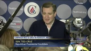 Ted Cruz discusses a potential Trump presidency