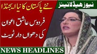 Firdous Ashiq Awan Tweets on Kashmir | News Headlines 17 August 2019 | Neo News