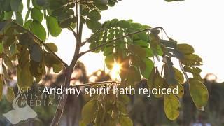 Luke 1:47 - And my spirit hath rejoiced in God my Saviour - Bible Verses