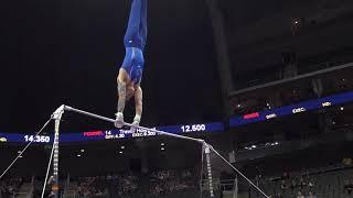 Timothy Wang –  High Bar – 2019 U.S. Gymnastics Championships – Senior Men Day 1