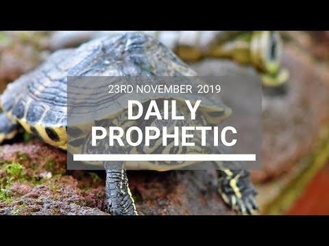 Daily Prophetic 23 November Word 7