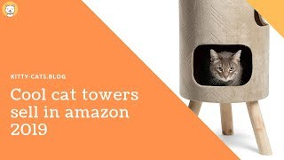 Top 5 Cool Cat Towers Sell on Amazon 2019 - Cat Tree your Cat will love it