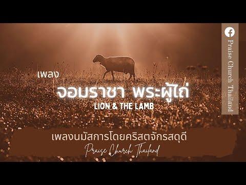 Lion & The Lamb :
