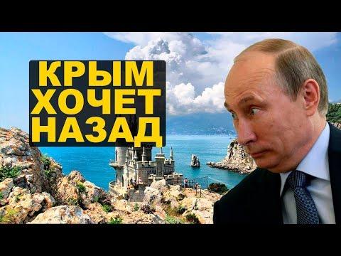 Крымчане поняли, куда они попали - UCt6nsWw2kQNszwpuuHoxBLA