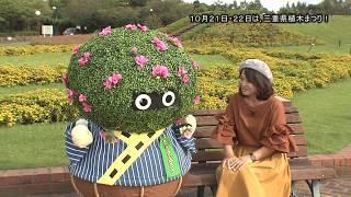 三重県植木まつり【2017年10月1日〜15日】