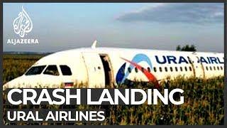 Ural Airlines plane makes 'miracle' emergency landing