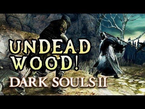 Dark Souls 2 Rage: SKELETON LORD'S BOSS! (#11) - UCHxt657_CXou2olVGks-tGw
