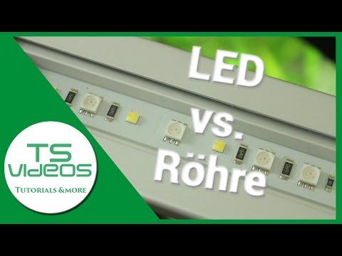 Aquarium Beleuchtung - Röhre vs. LED  Vor- und Nachteile - TSVideos - UCObu5v__mYTzKkNODmYpfeA