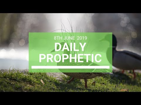 Daily Prophetic 8 June 2019   Word 4