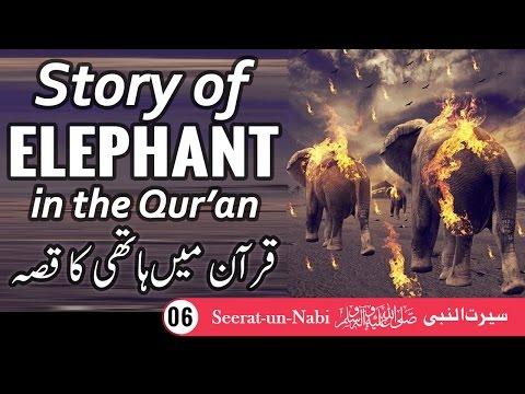 Islamic Historical Story Of Elephant