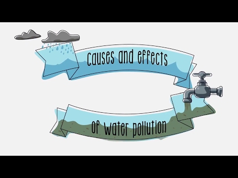 Causes and effects of water pollution