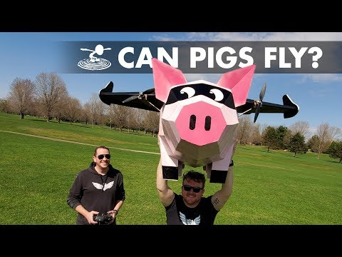 When (RC) pigs FLY....  - UC9zTuyWffK9ckEz1216noAw