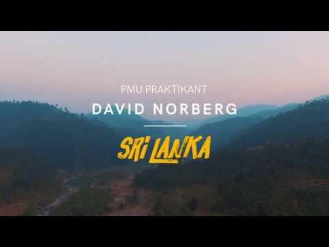 DAVID NORBERG