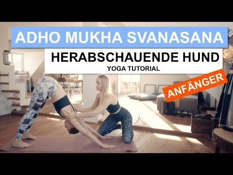 Herabschauender Hund - Adho Mukha Svanasana    Yoga Tutorial   SportScheck