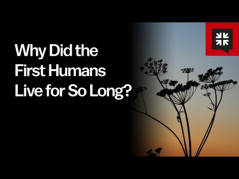 Why Did the First Humans Live for So Long? // Ask Pastor John