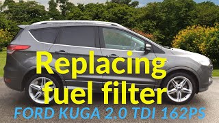 Sostituzione filtro gasolio Ford Kuga