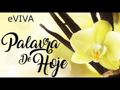 PALAVRA DE HOJE 10 DE JUNHO 2020 eVIVA MENSAGEM MOTIVACIONAL PARA REFLEXÃO SALMO 37 5 BOM DIA!