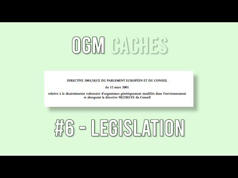 OGM Cachés - 6 : Législation