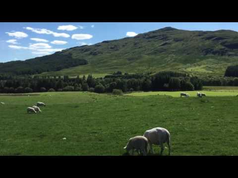 Video op YouTube: West Highland Way - With the sheeps