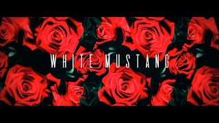 Lana Del Rey - White Mustang (Cover by Stuar - stuartmatthewhc , Classical