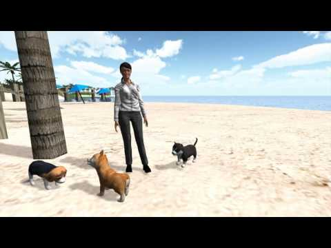 SaeboVR - Pet Shopping