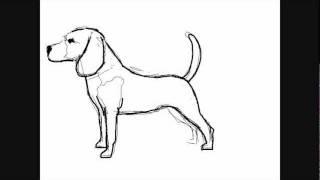 Hunde Zeichnungen Beagle Online Zeichnen Lernen Youtube