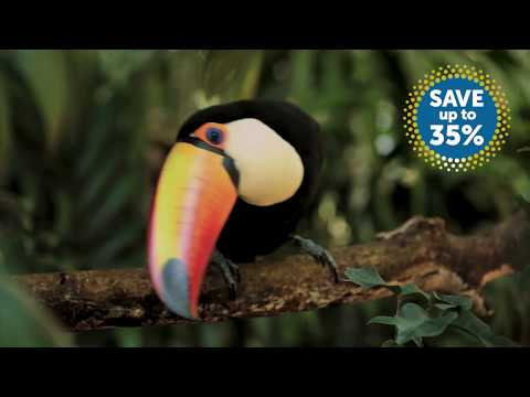 Save up to 35% on your next fly-cruise with Fred. Olsen's Warmer Cruising offers